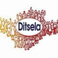 DITSELA-1