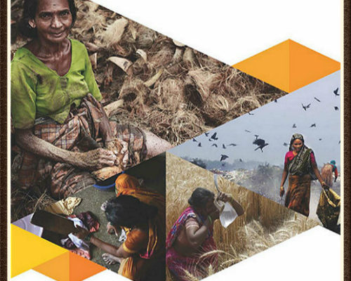 Social Protection in the Grassroots Perspective: A Training Manual